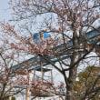 春の遠足「鈴鹿サーキット」