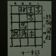 詰将棋第十四番<解説> 将棋世界平成29年1月号