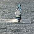 検見川の浜、手作りはんこ作成ツール、ウィンドサーフィン
