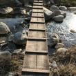 川にかかる一本橋