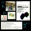 7/12  アートマネジメント公開講座2018 体験講座 『美術館で企画するアウトリーチ』