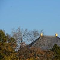 東大寺の鴟尾で