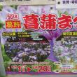 花菖蒲の名所 堀切菖蒲園に行ってきました。