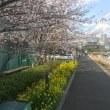 危険自転車の謎を解く          フジドライビングスクール東京