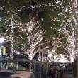 東京2日目の夜は・・・「レストラン大宮」他