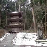 長野の伊那谷光前寺にヒカリゴケを見に行ってきました。しかし、