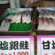 銀鮭(^.^)