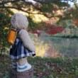「京都府立植物園」。秋の花々とそろそろ紅葉が見ごろの園内。