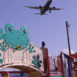 空港東第二公園から飛行機の撮影♪(11月23日)