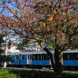 静岡鉄道は「県立美術館前駅」付近 秋の風景