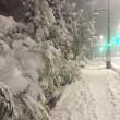 大雪の影響で!