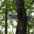 能岳~八重山
