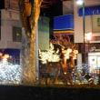 軽井沢大賀ホールへ・・・「渡辺貞夫 リバップ・ナイト」