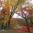 香嵐渓の紅葉 P1