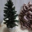 クリスマスツリーと白い柊のガーランドのレッスン始まりました。