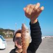 天気よく 魚も釣れました!