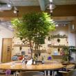 木の香りのするカフェ