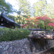 Piedvojagxo en Kyoto