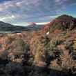 橋の上から眺める、秋のソナタ (-_-;)