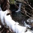凍えそう 12月12日(火)晴れ時々曇り