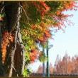 野木の冬フェスタ