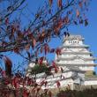 ちょいとぉ~お出かけ♪ 姫路城~(*^。^*) その1