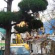 広島県福山市野上町1丁目14‐3・民家の解体工事