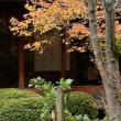 2863 日本の庭