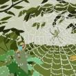 クモの巣と朝露