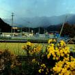 津野町の山奥は初雪でした