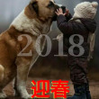 2018:慶賀