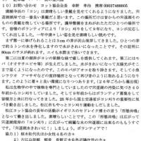 ゼロ磁場 西日本一 氣パワー 開運引き寄せスポット 明日は宍道湖ヨシ刈りボラ(2月2日)