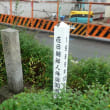 在日朝鮮人帰国者記念植樹の石碑 in 生田川公園