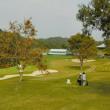 シニア ゴルフを見に行きました。