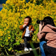 笠戸の青い空と、河津桜と菜の花と