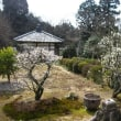 京都・曼殊院