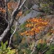 ★美ヶ原高原の秋(6)アルプス展望コースを南下して 2017