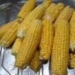 エダマメ「丹波黒大豆」の着莢と今年最後のトウモロコシ