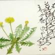 春野かそい記念館 Haruno Kasoi Museum 「ははこぐさ102」(たんぽぽ)