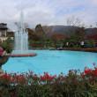 もみじ狩り 神奈川県箱根町強羅 強羅公園(2)噴水池