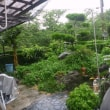 大雨ですが、ここはいたってのんびりのお役所