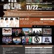 平和島BIG LIVE Vol.10 タイムテーブル発表