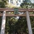 最古の古道 「山の辺の道」