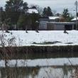 雪の上がった日、景色の変化