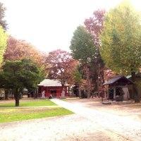 小野神社に行って来ました〜