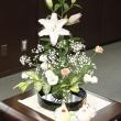 市長室の花(8月14日)
