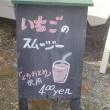 小砂春の陶器市