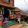ベトナム 少数民族の村・カットカット村