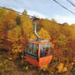 札幌国際のゴンドラから紅葉見物