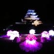 今日から「鶴ヶ城」秋のライトアップが始まりました(^o^)/~~